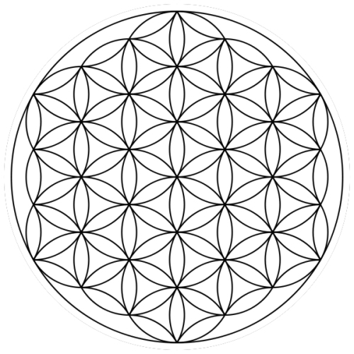 Diagram of the Flower of Life