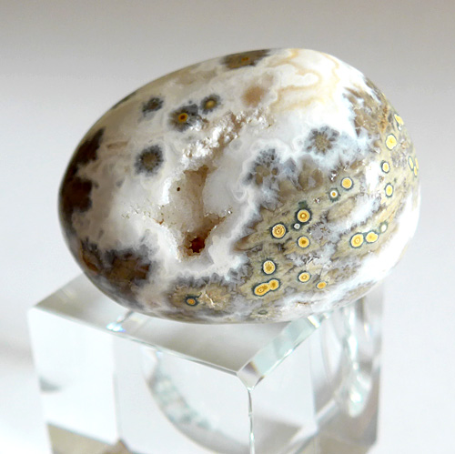 Grey & White Ocean Jasper Egg w/Druzy Windows