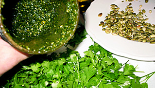 The Lazy Gardener's Spring Cilantro Pumpkin Seed Pesto