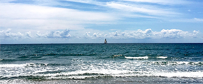 Red Reef Sailboat by Jane Sherry