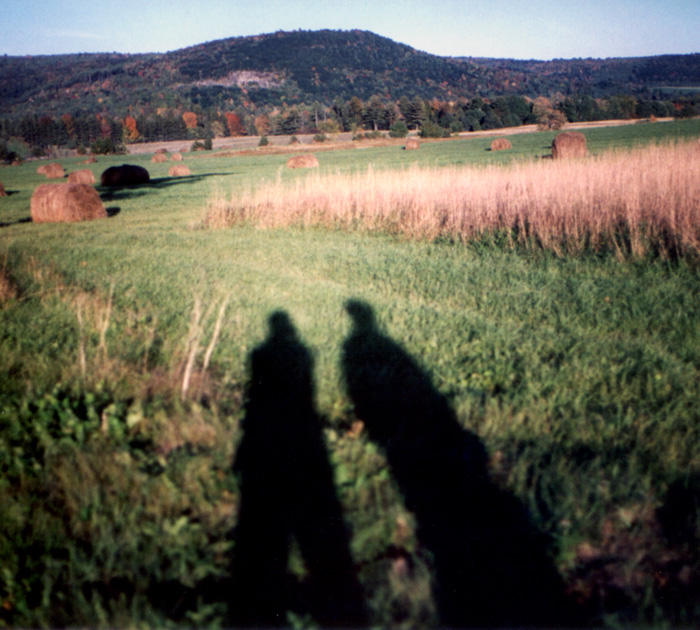 Autumn Afternoon Shadow Play