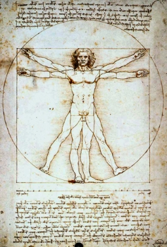 Leonardo Da Vinci's Journal Drawing