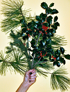 Holy Days Bouquet holly branch by jane sherry photo