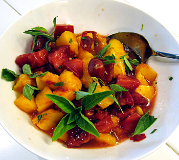 peach tomato salsa at satyacenter.com