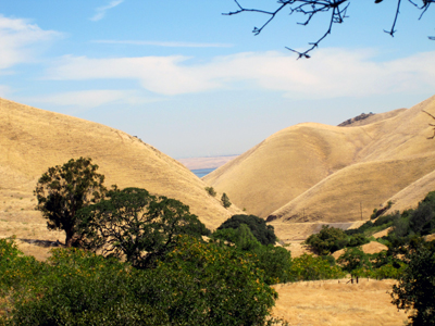 Round Valley Preserve, near Antioch, CA, photo by Jane Sherry