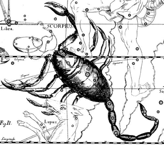 Constellation Scorpio by Hevelius