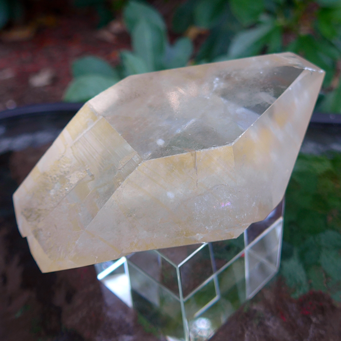 Reclining Trapezoid Golden Healer Lemurian Point with Window