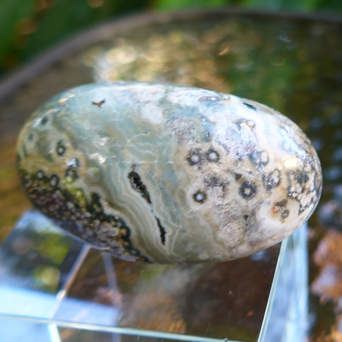 Green Speckled Ocean Jasper