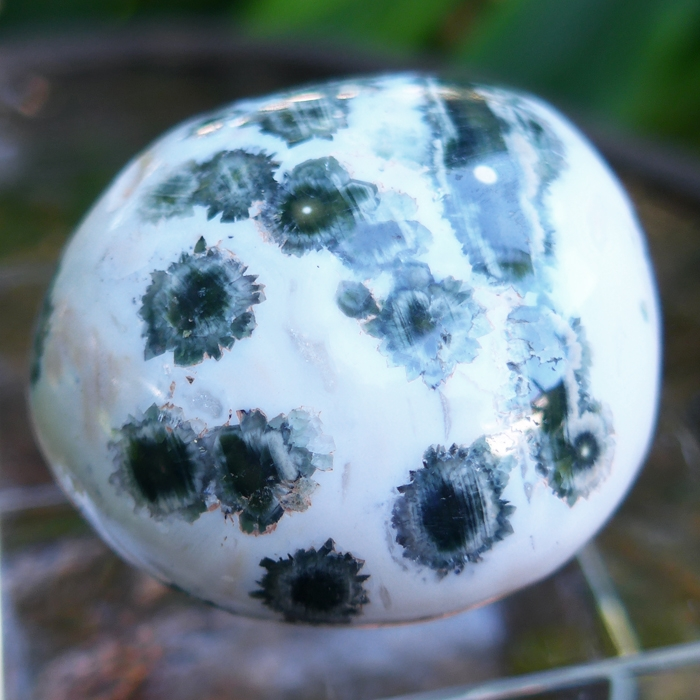 Small White and Green Ocean Jasper
