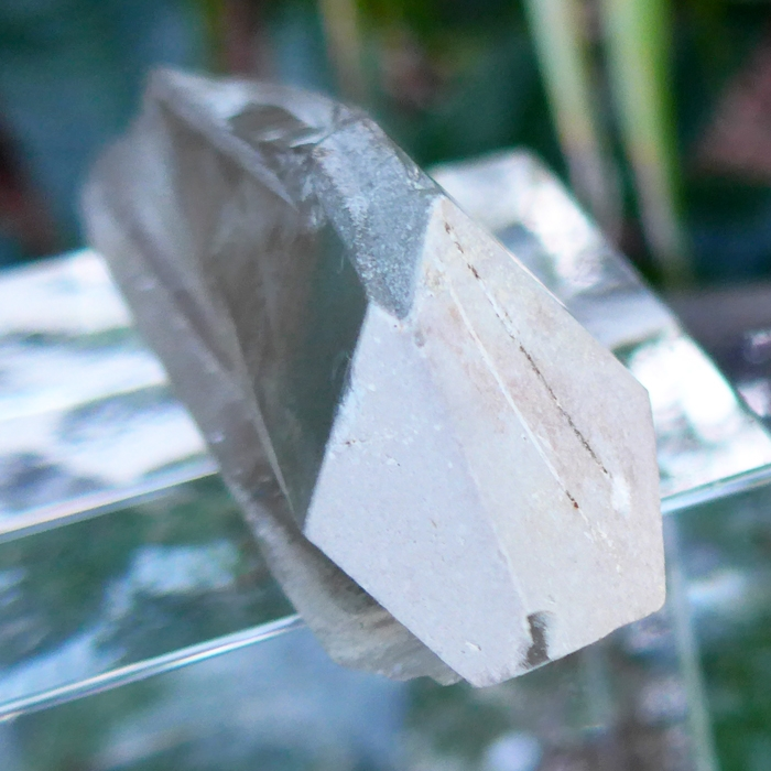 Dream Lemurian Growth Interference Wand